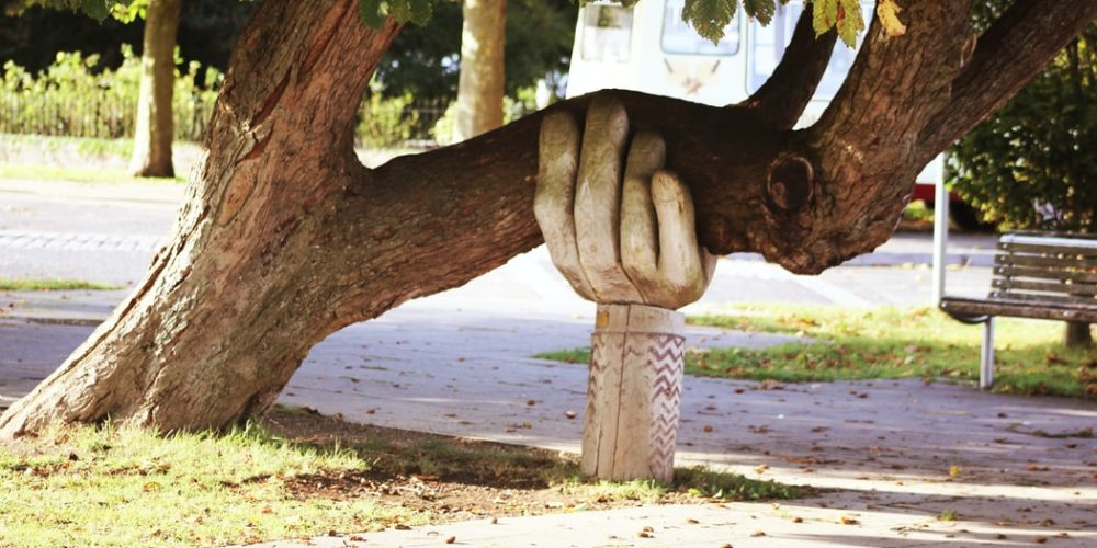 propped tree in a hand form